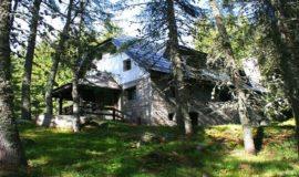 šumska kuća