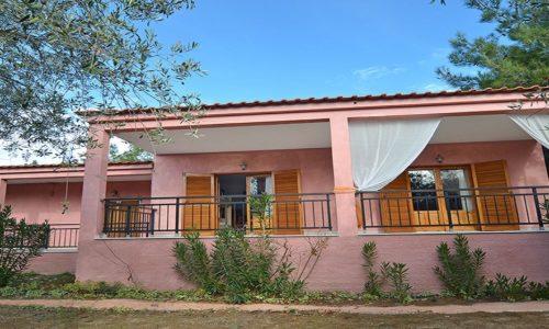 kapahi studios